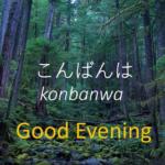 ナニ? 寝ているうちに日本語が覚えられるんだって!? 日本語の睡眠学習動画に興味津々の外国人たち