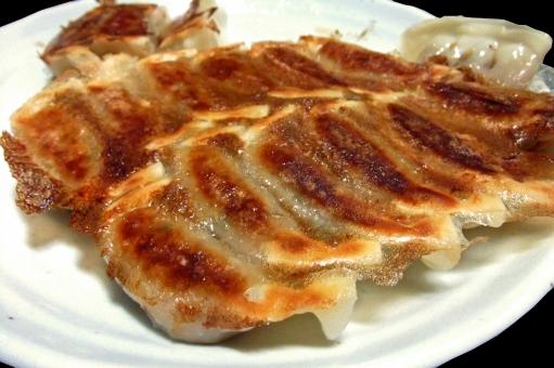 大好物だ! さっそく今日作ってみる!日本の焼き餃子に熱い視線を注ぐ外国人たち