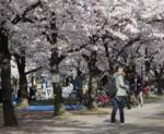「日本は清潔‥中国はゴミ捨て場」中国と日本を比較する動画をめぐって紛糾する海外の議論